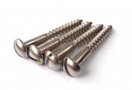 Stainless Steel Slotted Wood Screws Ø4.8 x 38.1mm - 4 Pack